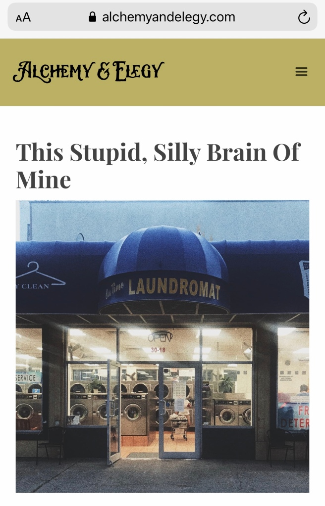 This Stupid, Silly Brain of Mine