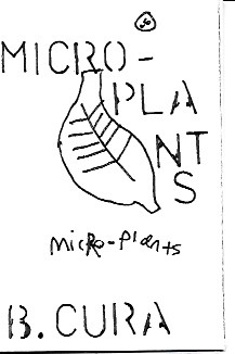 MICROPLANTS